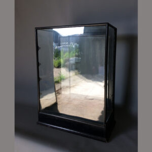 Edwardian ebonised mahogany display case